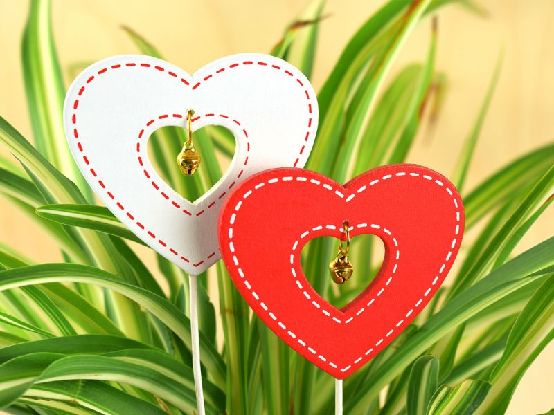 Dekostecker Herzen, 2er-Set