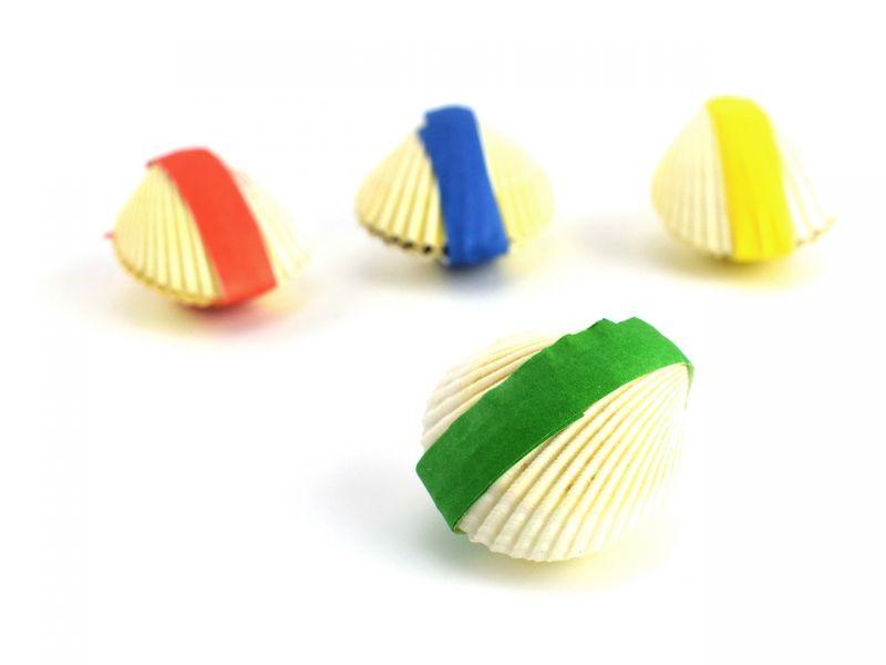 Wundermuschel, 1 Stück, Farben sortiert